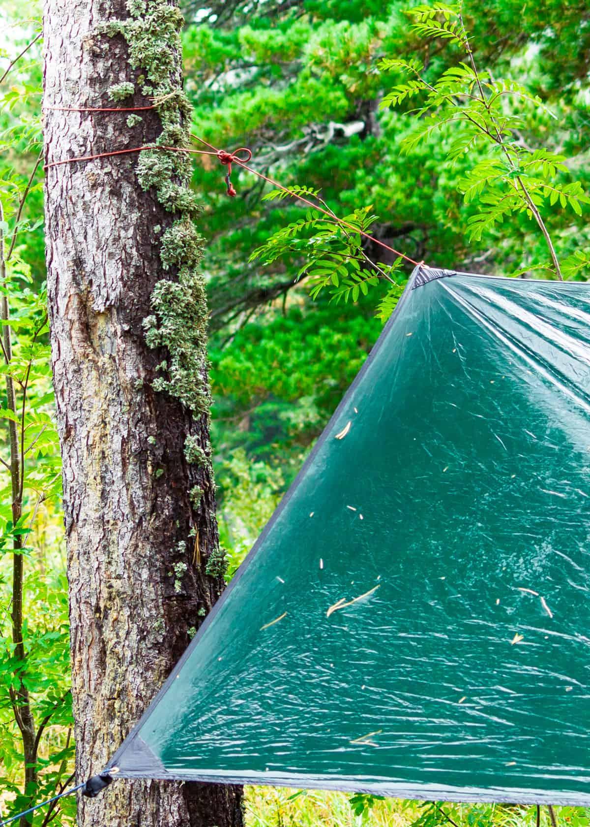 Best hammock camping tarps